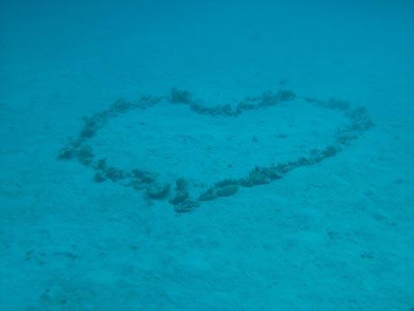 Das Herz des Ozeans... :-)
