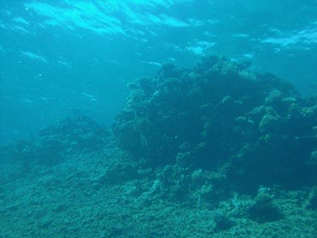 Die Lagune von Sakwa Abu Kalawa