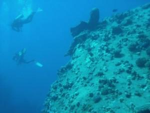 """Noch mehr Tauchabenteuer: der """"Adventure Diver""""."""
