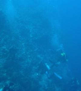 """Das Abenteuer geht weiter - beim """"Advanced Open Water Diver""""."""