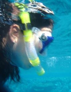 Die einfachste Möglichkeit, die Unterwasserwelt zu erkunden: Schnorcheln.