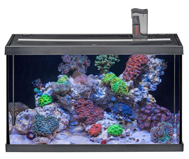 Praktisch: Komplettsets enthalten bereits alle technischen Geräte, um ein Meerwasser-Aquarium erfolgreich zu betreiben. Foto: djd/Eheim